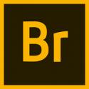 Adobe Bridge CC for Enterprise