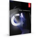 Adobe Contribute 6.5 1User/ vĩnh viễn