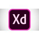 Adobe XD CC for Teams ( Subcription )