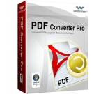 PDF To Word Converter Pro - 1PC